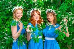 3 счастливых девушки в идентичных платьях представляя в саде Стоковая Фотография