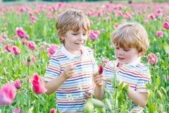 2 счастливых маленьких белокурых дет в зацветая поле мака Стоковое Изображение RF