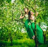 2 счастливых милых девушки сидя на яблоне цветения Стоковые Фотографии RF