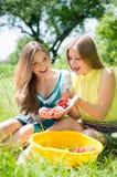 2 счастливых друз молодых женщин улыбки на ферме Стоковое Изображение RF