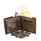 Счет ванны в коричневых бумажнике и монетке стоковое изображение rf