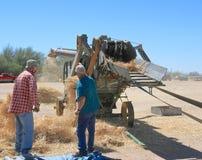 США: Испытывать античный сбор зернокомбайна John Deere Стоковое Изображение