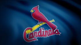 США - НЬЮ-ЙОРК, 12-ое августа 2018: Развевая флаг с логотипом команды кардиналов Сент-Луис профессиональным Конец-вверх развевая  стоковые фото