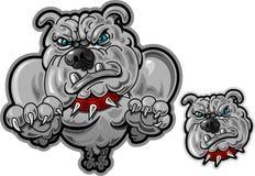 съемка головки собаки быка скача бесплатная иллюстрация