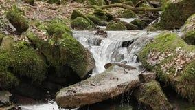 Съемка замедленного движения подачи/водопада реки акции видеоматериалы