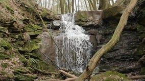 Съемка замедленного движения подачи/водопада реки видеоматериал