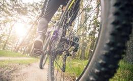 Съемка задней части колеса велосипеда Стоковые Фотографии RF