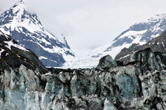съемка ледника залива Стоковые Фото