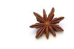 Съемка макроса анисовки звезды Стоковое Изображение