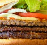 Съемка макроса бургера Стоковые Изображения RF