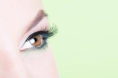 Съемка макроса глаза женщины с расширением плетки Стоковое Изображение RF