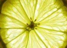 съемка макроса лимона зрелая Стоковое фото RF