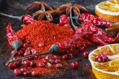 Съемка макроса порошка паприки Специи chili горячий Естественное traditiona Стоковая Фотография RF
