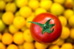 Съемка макроса свеже выбранного зрелого красного томата и малых желтых слив Стоковое Изображение RF