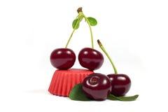 Съемка макроса сочной вишни с лист на красной оболочке пирожного изолированной на белизне Стоковое фото RF