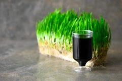 Съемка питья Wheatgrass Стоковые Фотографии RF