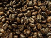 Съемка предпосылки зажаренного в духовке кофейного зерна Стоковые Изображения RF