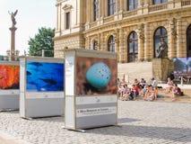съемка природы выставки стоковая фотография