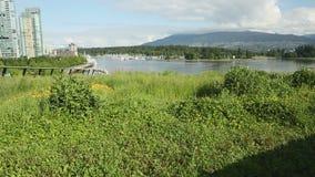 Съемка тележки взгляда крыши зеленого цвета Ванкувера акции видеоматериалы