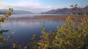 Съемка 4K UHD тележки осени озера Osoyoos видеоматериал