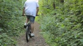 Съемка Steadicam катания велосипеда на горной тропе видеоматериал
