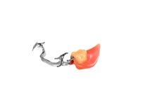 Съемный частично denture Стоковое Изображение RF