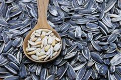 Съестные семена подсолнуха в деревянной ложке Стоковые Фото