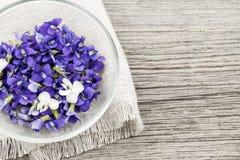 Съестные фиолеты в шаре стоковые фотографии rf