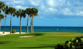 Сыграйте в гольф зеленые песок и океан ладоней пляжа в тропическом рае Стоковая Фотография RF