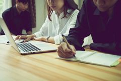 Сыгранность, молодая коммерсантка в офисе в вскользь рубашке Выбирать информацию с коллегами с компьютером Стоковое фото RF