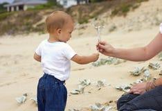 сынок мати пляжа стоковое фото rf