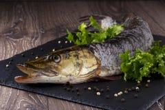 Сырая рыба Стоковое Изображение