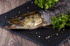 Сырая рыба Стоковая Фотография RF