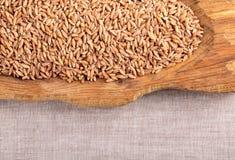 Сырое органическое сказанное по буквам зерно стоковые изображения