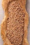 Сырое органическое сказанное по буквам зерно стоковая фотография