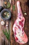 Сырцовая вся нога овечки с специями Стоковые Фото