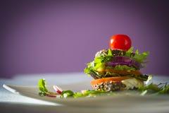 Сырцовая еда Стоковые Изображения RF