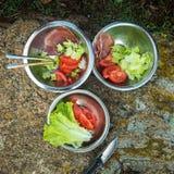 Сырцовая еда в железных плитах в природе Стоковые Изображения RF