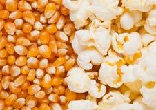 Сырцовая золотая сладостной плита семян мозоли и попкорна половинная Стоковое Изображение