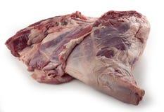 Сырцовая нога овечки Стоковая Фотография RF