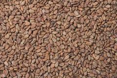 Сырцовая предпосылка какао Стоковая Фотография