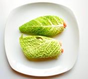 Сырцовая принципиальная схема диетпитания еды с свежими обручами капусты стоковое изображение