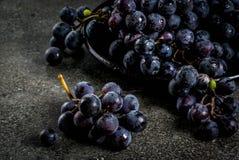 Сырцовая черная виноградина Стоковое Изображение RF