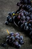 Сырцовая черная виноградина Стоковое Фото
