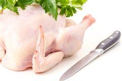 Сырцовое изолированное мясо цыпленка Стоковое Фото