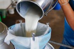 Сырцовое молоко Стоковые Изображения