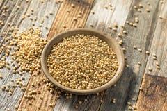 Сырцовое органическое зерно сорго стоковая фотография