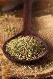 Сырцовое органическое семя фенхеля Стоковая Фотография RF