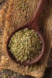 Сырцовое органическое семя фенхеля Стоковое Изображение RF