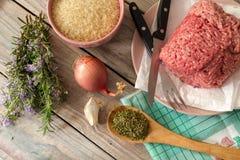 Сырцовое, свежее семенить мясо на плите, специи, рис и овощи стоковые изображения rf
